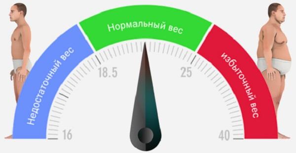 Рассчитать индекс массы тела для мужчин калькулятор